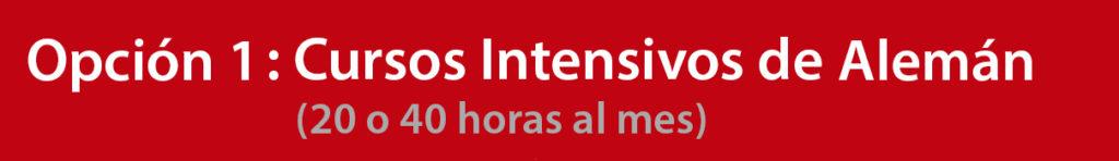 Cursos Intensivos de Alemán en Marbella